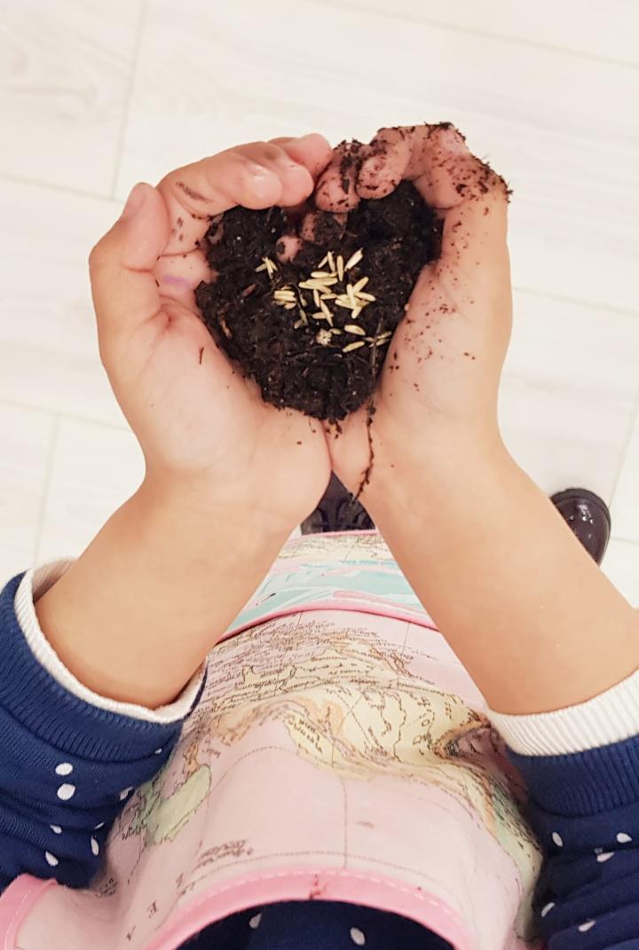 Taller Papel y bombas de semillas, método japones